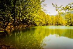 Tarde da beira do lago Fotografia de Stock