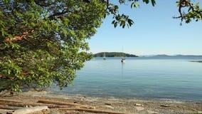 Tarde de Anchorage de las islas del golfo, Columbia Británica metrajes
