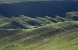 Tarde de la primavera de Orenburg Toscana fotografía de archivo