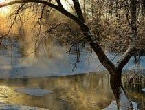 Tarde del invierno Fotografía de archivo