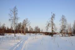 Tarde del invierno y lanskape escarchado del norte imágenes de archivo libres de regalías