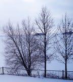 Tarde desolada do inverno sobre o lago coberto de neve e as ilhas Foto de Stock