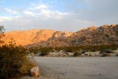 Tarde do deserto Fotos de Stock