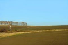 Tarde en el otoño, el campo del trigo de invierno Imagen de archivo