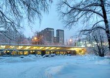 Tarde en parque del invierno moscú Izmailovo fotografía de archivo