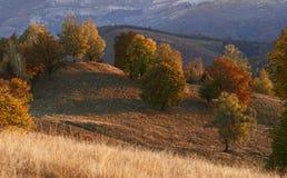 Tarde hermosa del otoño imágenes de archivo libres de regalías