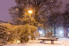 Tarde nevado do inverno no parque Imagens de Stock Royalty Free
