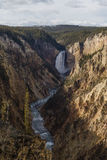 Tarde nublada en Grand Canyon de Yellowstone Imagenes de archivo