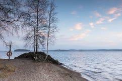 Tarde otoñal hermosa en la orilla del lago Foto de archivo