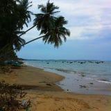 Tarde romántica en la playa Imagen de archivo libre de regalías