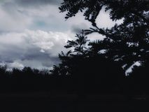 Tardes nebulosas do verão Fotografia de Stock