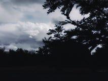 Tardes nubladas del verano fotografía de archivo