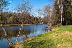 Tarelochkin池塘在森林公园Saltykovsky,莫斯科地区 库存图片