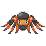 Tarentule d'araignée de bande dessinée avec les genoux rouges Animal de danger illustration libre de droits