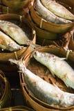 targ rybny dekatyzujący Obrazy Royalty Free