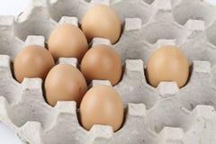 target278_1_ łamający kulinarnych obrazu jajek nietknięty postęp niektóre taca obrazy royalty free
