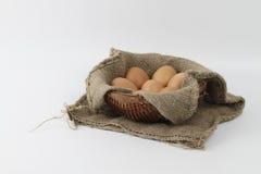 target278_1_ łamający kulinarnych obrazu jajek nietknięty postęp niektóre taca fotografia stock
