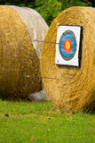 Target archers. On the rolling prairie royalty free stock images