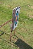 On target. Arrow darts shot to target Royalty Free Stock Photos