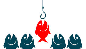 Target audience fish concept. Target audience fish jumping on a fishing hook Stock Photography
