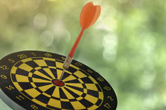 Target dart with red arrow Royalty Free Stock Image