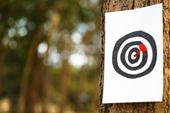 Target. Drawing target with dart on tree trunk stock photography