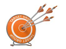 Target Group. Business Background. Target Group - Business Background. Three Arrows Hitting the Center of a Orange Target, where is Written Word Target Group Royalty Free Stock Photo