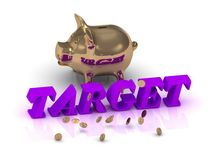 TARGET- inscription of green letters and gold Piggy Royalty Free Stock Image