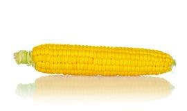 target1432_1_ kukurydzanego ucho odosobniona ścieżka Obrazy Royalty Free