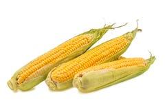 target1432_1_ kukurydzanego ucho odosobniona ścieżka Obrazy Stock