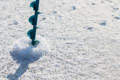 target142_1_ lodowych właśnie kłamstw wychwytany zima zander Obrazy Stock