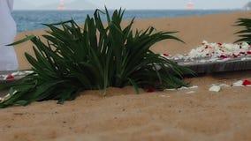 TARGET153_1_ na plaży zbiory