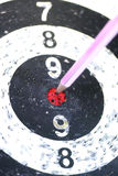 Pencil Target on the Dart. The Pencil Arrow to a red target on the Dart royalty free stock images