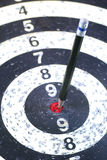 Pencil Target for business concept. The Pencil Arrow to a red target on the Dart stock image
