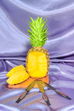 Target pineapple Royalty Free Stock Image