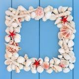 target2096_1_ ramowy wspominek ścieżki seashell wakacje Obrazy Stock