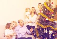 target1535_0_ rodzinnego jedlinowego drzewa zdjęcia stock