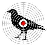 Target shooting bird in a dash.  Stock Photography