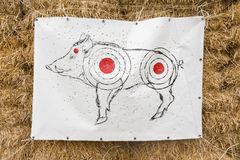 Target shooting. With a picture of a wild boar Royalty Free Stock Photography