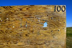 Target shooting on sheet of plywood. Plywood full of holes used for target shooting with a rifle at 100 yards Royalty Free Stock Photo
