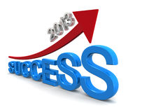 Target of success in year 2013. Vision of success in year 2013 vector illustration