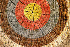 Target on tree. A cross section of a tree with grungy looking target painted on it Royalty Free Stock Photos