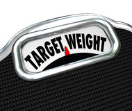 Target Weight Words Scale Healthy Goal Fitness Royalty Free Stock Photos