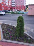 target1895_1_ wielo- kondygnacja Children& x27; s parking i boisko Fotografia Royalty Free