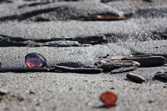 target2589_0_ piasek pluskoczącą skorupę plażowe purpury Zdjęcie Stock