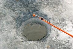 target568_1_ dziury prącia zima Obraz Stock