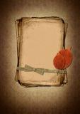 target735_1_ projekta grunge papierów świstka styl Fotografia Royalty Free