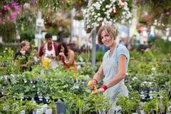 target823_1_ wodnej kobiety piękne rośliny Zdjęcie Stock