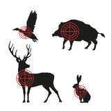 Targets with black silhouettes of animals on a white background. Hunting icons Stock Photos