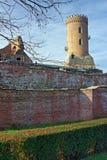 Targoviste Ruinen lizenzfreies stockfoto